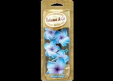 Osvěžovač vzduchu HandStands, Bahama - Necklace Tahitian Vanilla